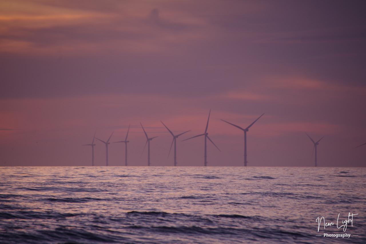 dark-purple-windfarm