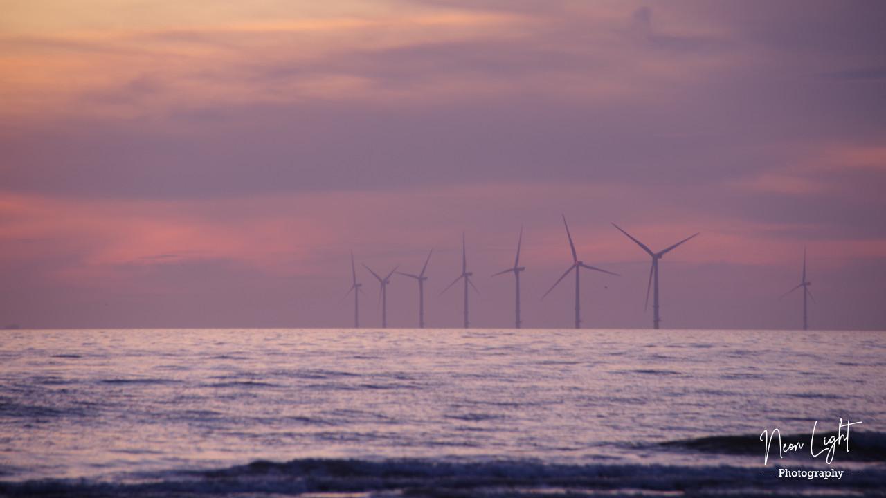 windfarm-at-dusk
