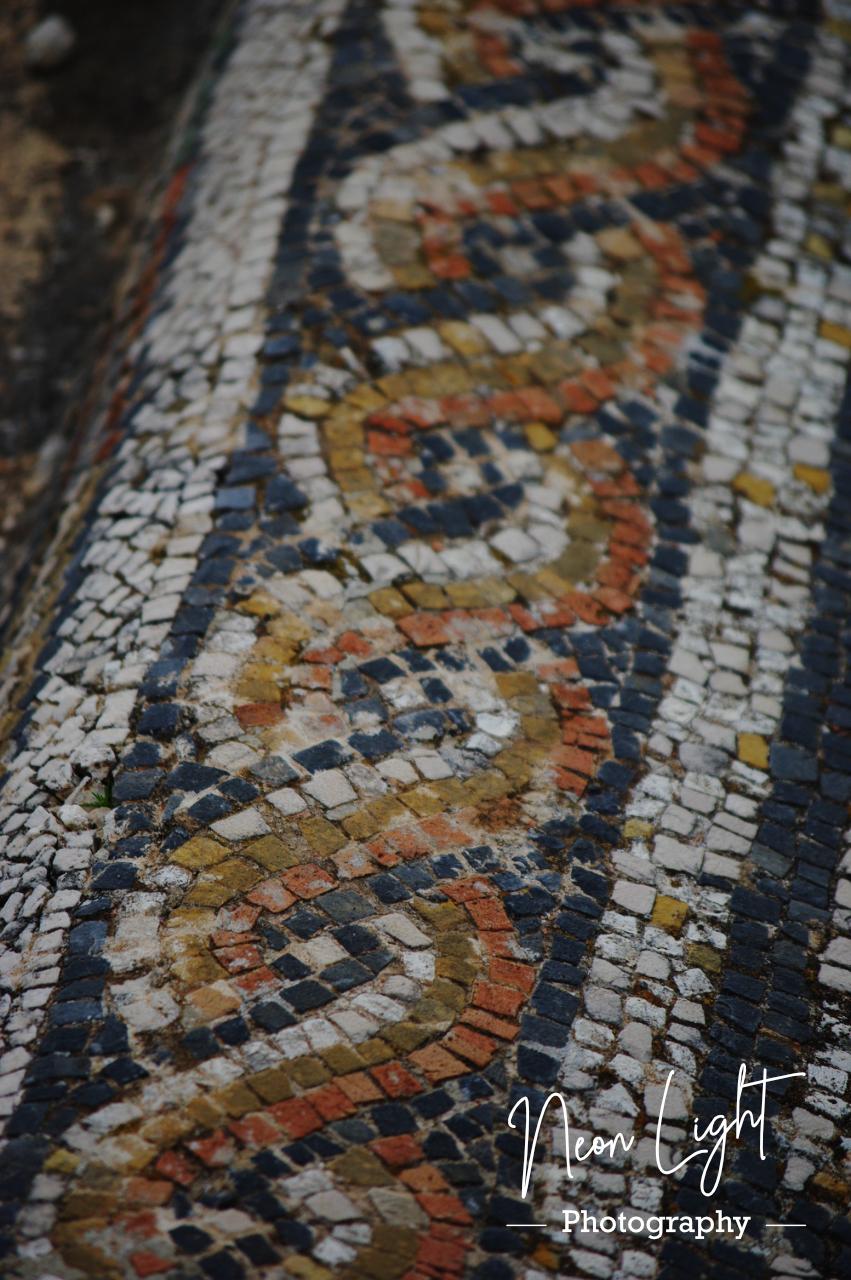 Volubilis Mosaic