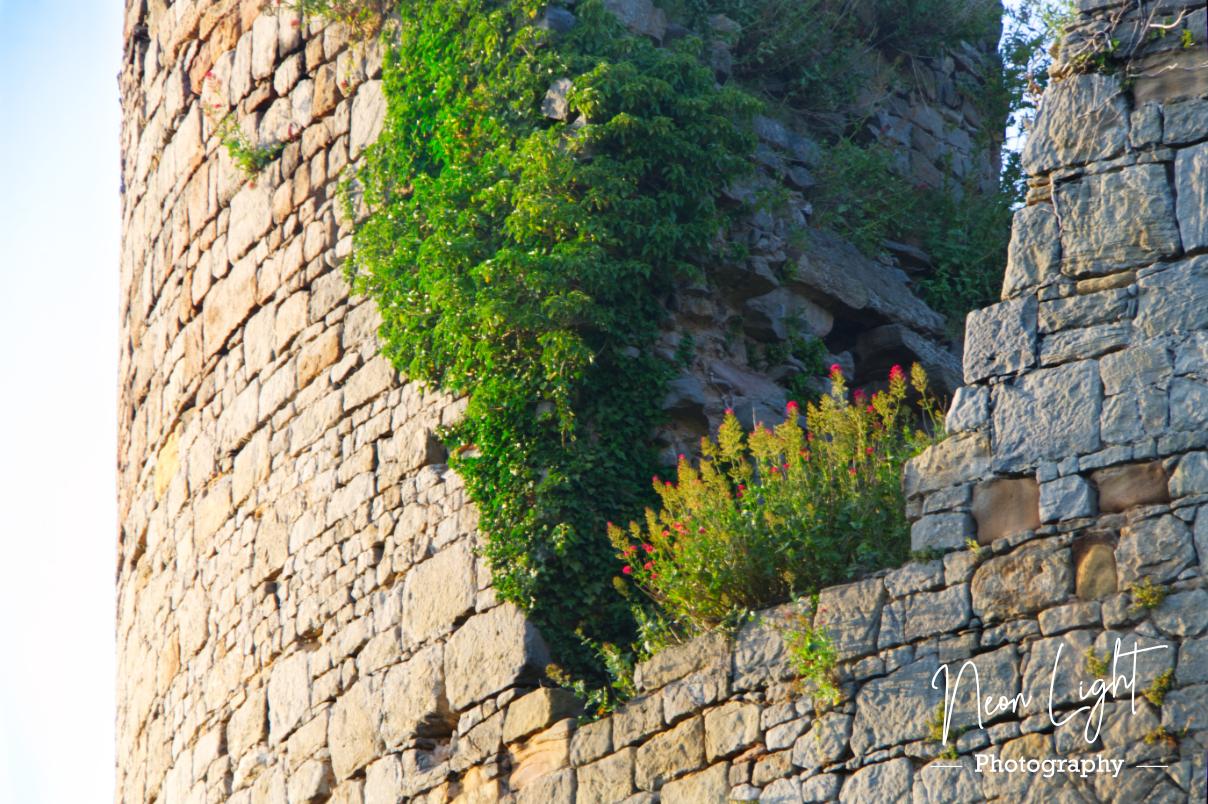 Hawarden Castle Ruins