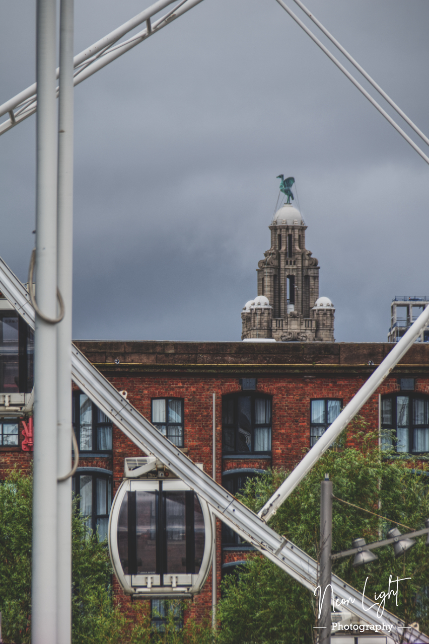 The Wheel and the Liver Bird