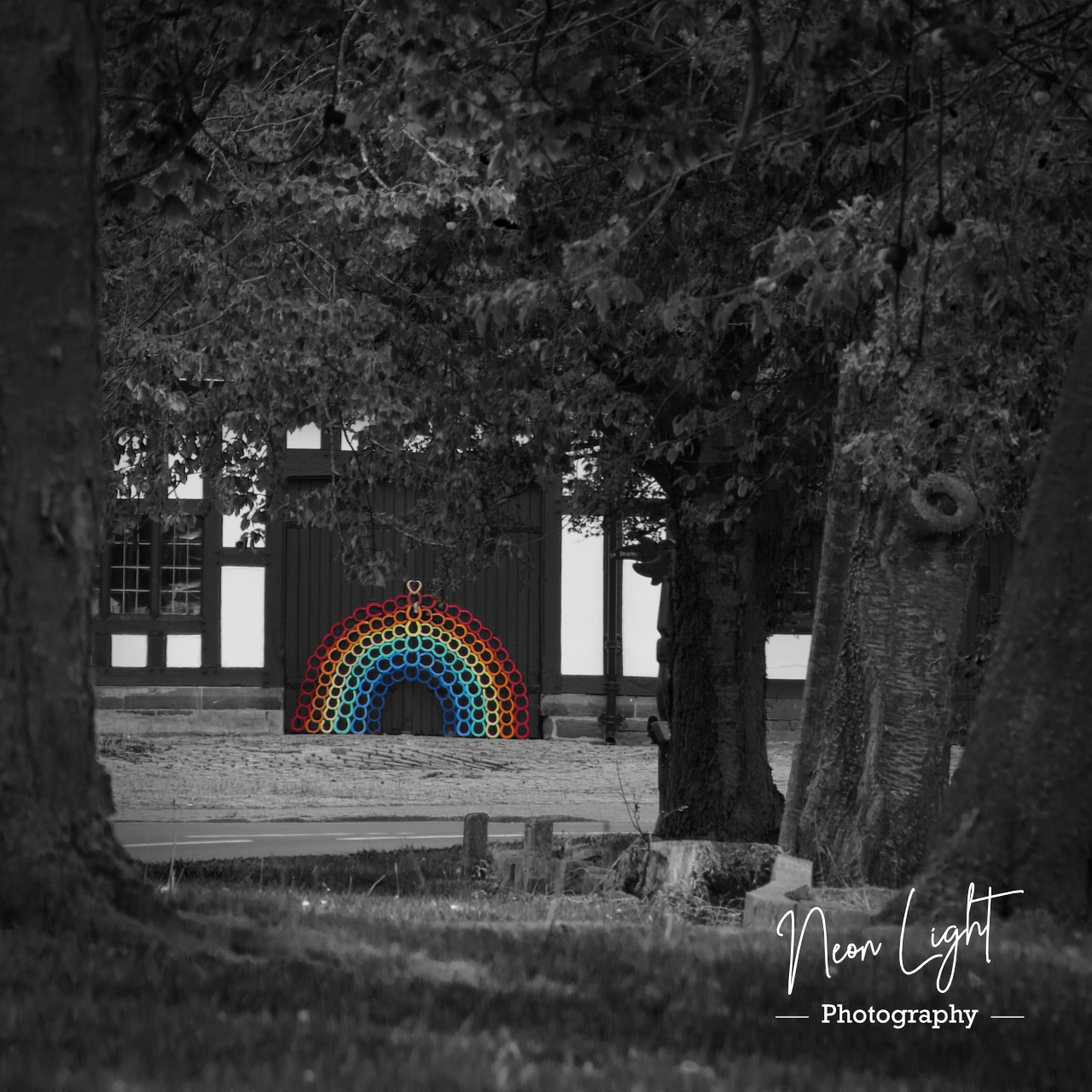 BW Smithy Rainbow through the Trees