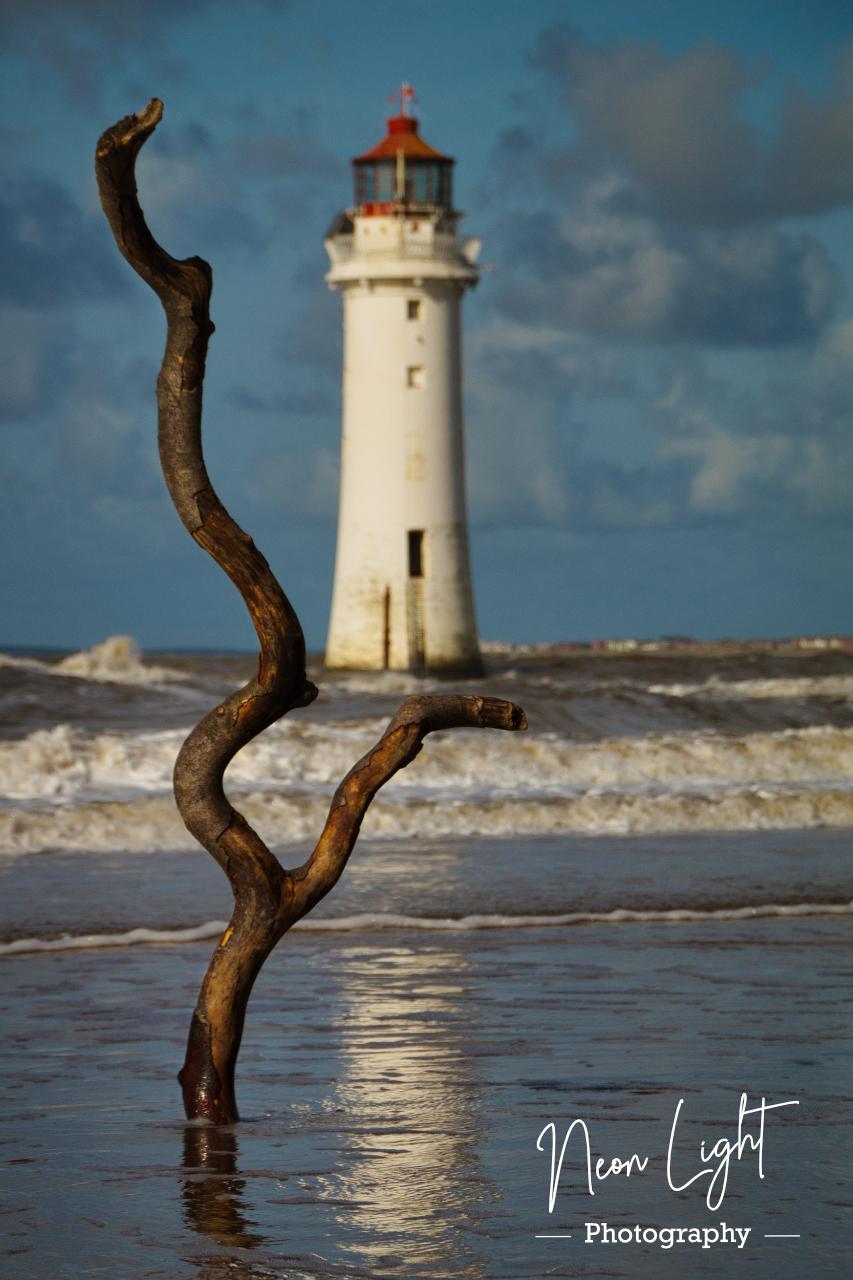 Driftwood New Brighton Lighthouse