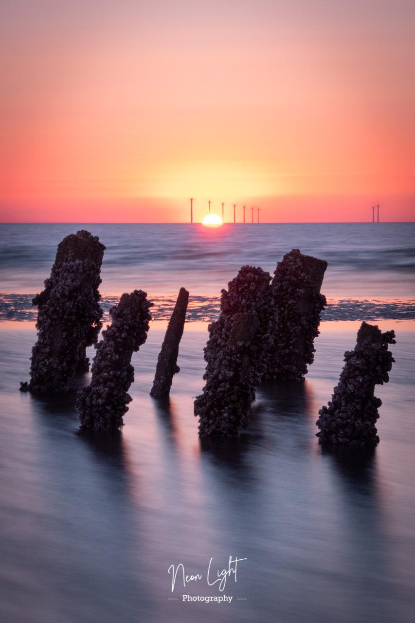 Sunset Pillars